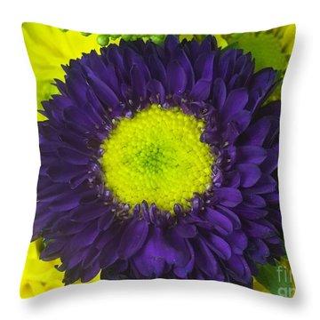Delight2 Throw Pillow