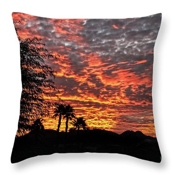 Throw Pillow featuring the photograph Delightful Evening by Robert Bales