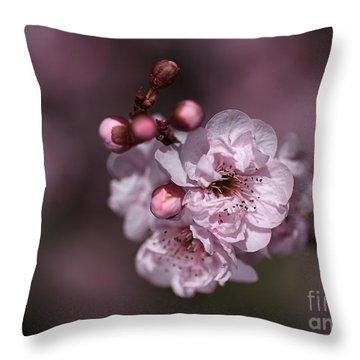 Delightful Pink Prunus Flowers Throw Pillow