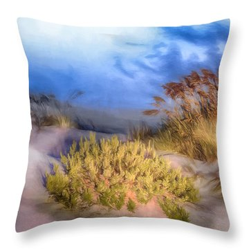 Delightfully Quiet Throw Pillow by Dan Carmichael