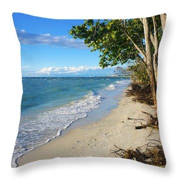 Delnor Wiggins Pass State Park Throw Pillow