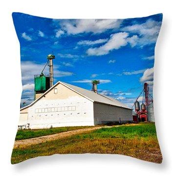Delta Farmers Co Op Throw Pillow
