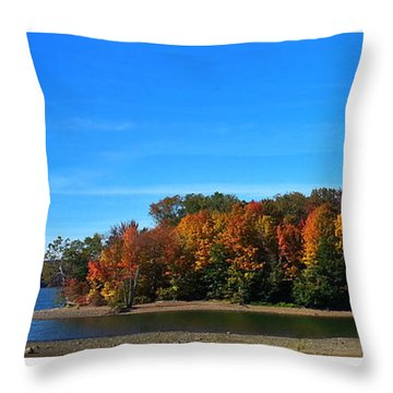 Throw Pillow featuring the photograph Delta Lake State Park Foliage by Diane E Berry