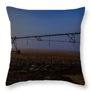 Delta Morning In Mississippi Throw Pillow
