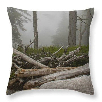 Ruby Beach In A Fog Throw Pillow