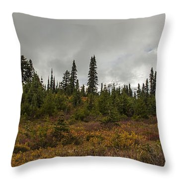 Mt. Rainier - Head In The Clouds Throw Pillow