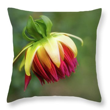 Demure Dahlia Bud Throw Pillow