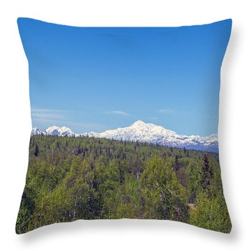 Denali  Throw Pillow by Allan Levin
