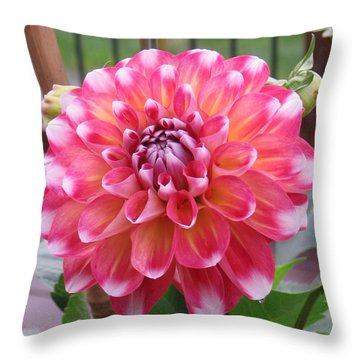 Denali Dahlia Throw Pillow
