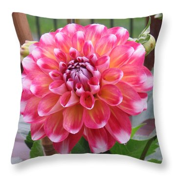 Denali Dahlia Throw Pillow