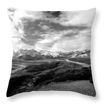 Denali National Park 4 Throw Pillow