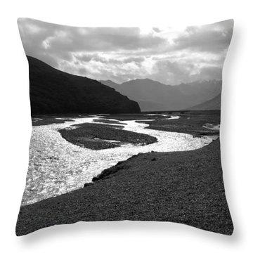 Denali National Park 5 Throw Pillow