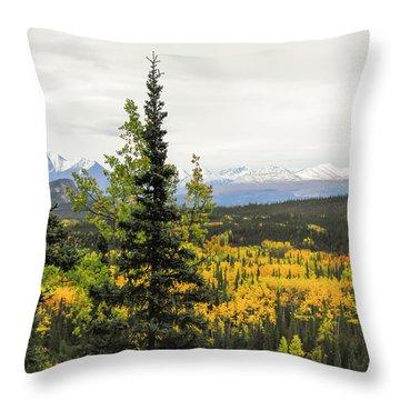 Denali National Park Landscape Throw Pillow