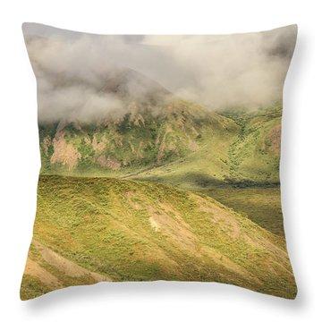 Denali National Park Mountain Under Clouds Throw Pillow
