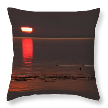 Throw Pillow featuring the photograph Denmark Summer by Colette V Hera  Guggenheim