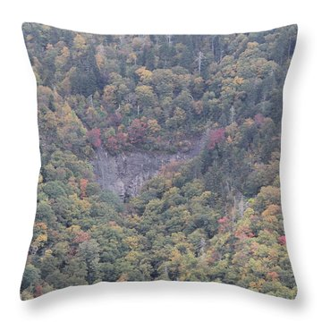 Dense Woods Throw Pillow
