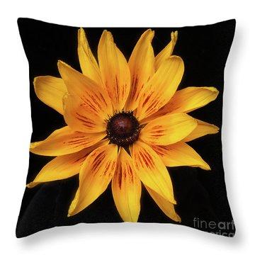 Denver Daisy Throw Pillow