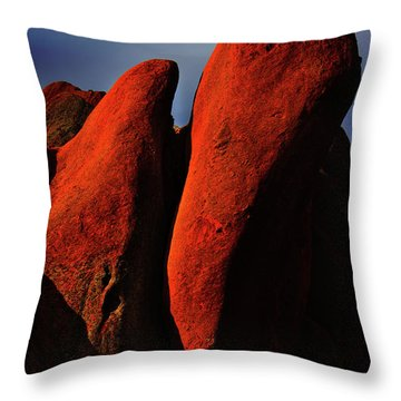 Throw Pillow featuring the photograph Denver In Late Fall by Dennis Dame