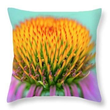 Depth Of Field Throw Pillow
