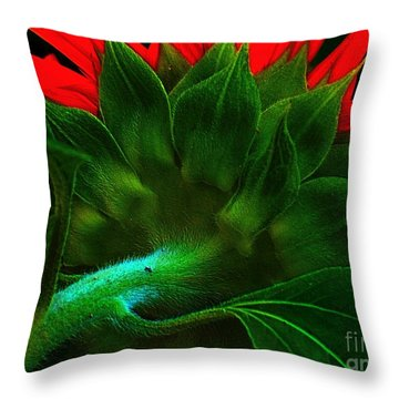 Throw Pillow featuring the photograph Derriere by Elfriede Fulda