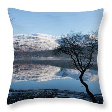 Derwentwater Tree View Throw Pillow