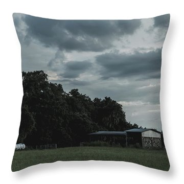 Desaturated Barn Throw Pillow