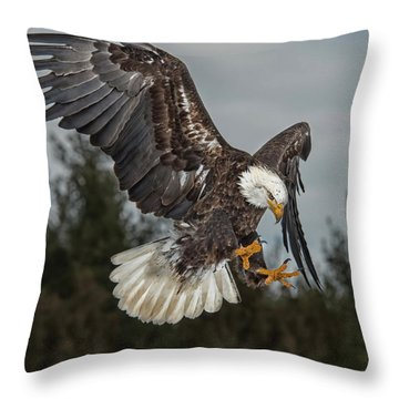 Descending Eagle Throw Pillow