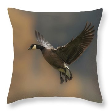 Throw Pillow featuring the photograph Descending Goose by Angie Vogel