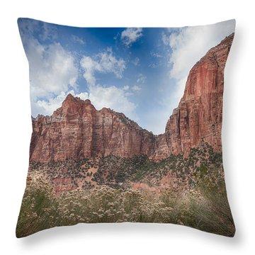 Descent Into Zion Throw Pillow