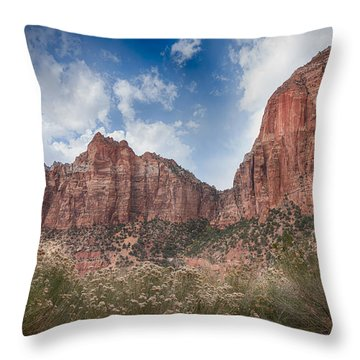 Descent Into Zion Throw Pillow