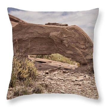 Desert Badlands Throw Pillow