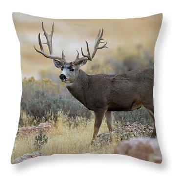 Desert Beast Throw Pillow