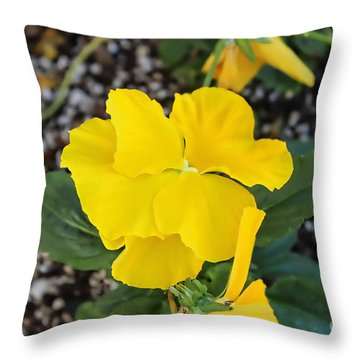 Floral Desert Beauty Throw Pillow