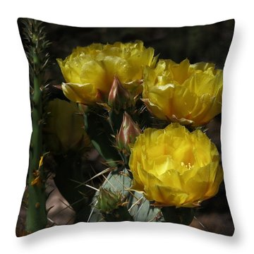 Desert Blooming Throw Pillow