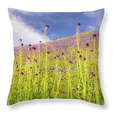 Desert Candles At Carrizo Plain Throw Pillow