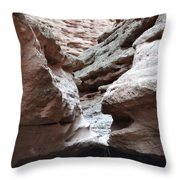 Throw Pillow featuring the photograph Desert Canyon Stream by Andrea Hazel Ihlefeld
