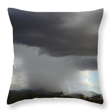 Desert Downpour Throw Pillow