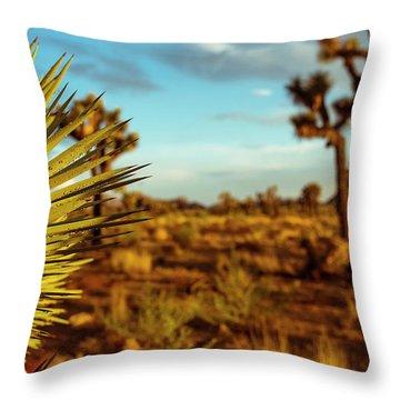 Desert Fan Throw Pillow