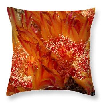 Desert Fire Throw Pillow