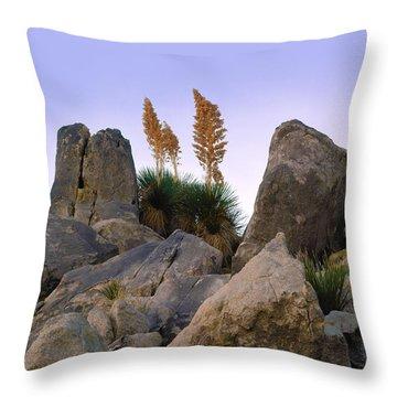 Desert Flags - Cropped Version Throw Pillow