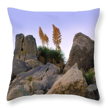 Desert Flags - Cropped Version Throw Pillow