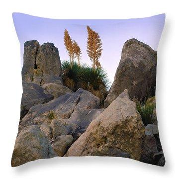 Desert Flags Throw Pillow