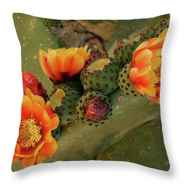 Throw Pillow featuring the photograph Desert Flame by Lucinda Walter