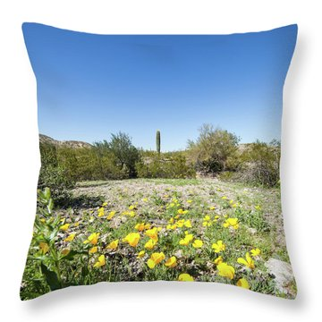 Desert Flowers And Cactus Throw Pillow by Ed Cilley