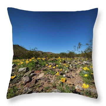 Desert Flowers In Spring Throw Pillow by Ed Cilley