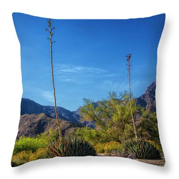 Throw Pillow featuring the photograph Desert Flowers In The Anza-borrego Desert State Park by Randall Nyhof