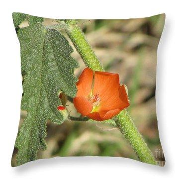Desert Globemallow Bloom 202 Throw Pillow