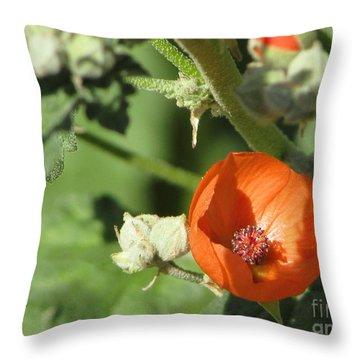 Desert Globemallow Bloom 215 Throw Pillow