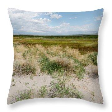Desert Grass Throw Pillow