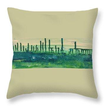 Desert Horizon Throw Pillow